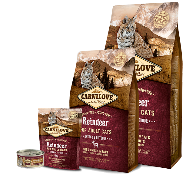 Carnilove Cat Reindeer for Adult Energy & Outdoor